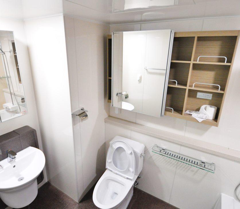 new style bathroom